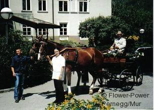 kutsche8